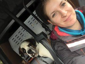 PAWalk s'occupe de vos chiens pendant votre absence